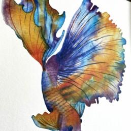 Siamese Fish Eco Friendly Art Print